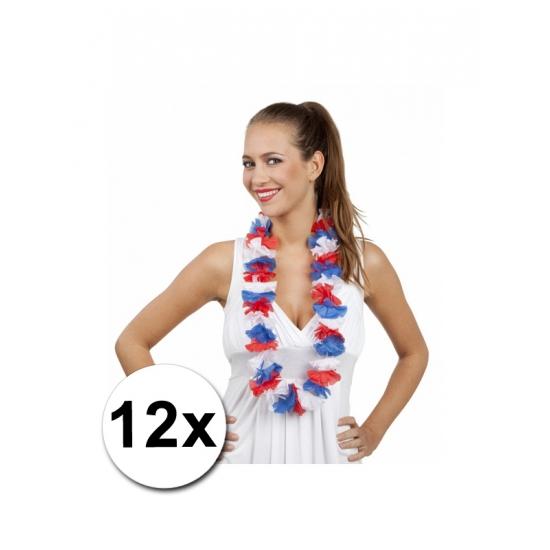 12 Hollandse Hawaii kransen