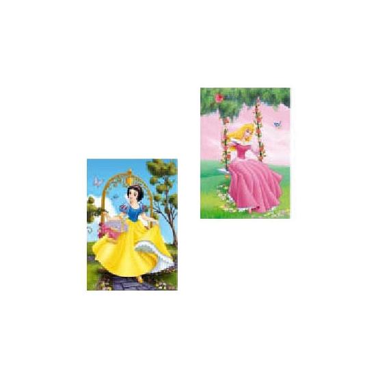 Dubbele wenskaarten Disney Prinsessen tuin
