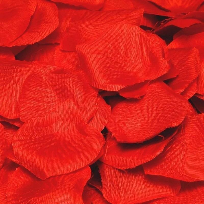 Feest rozenblaadjes in het rood