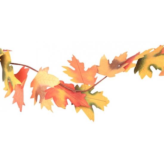 Gekleurde bladeren herfstslinger