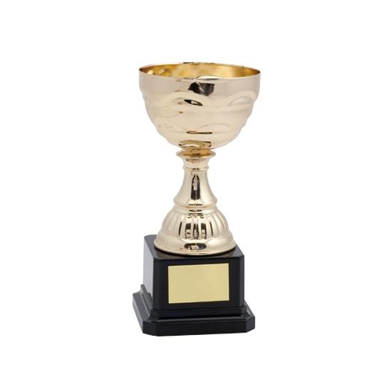 Gouden trofee kunststof