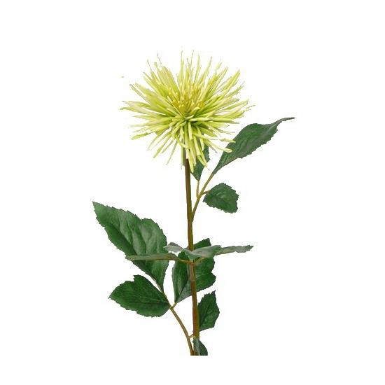 Groene Chrysanten kuntbloemen 71 cm