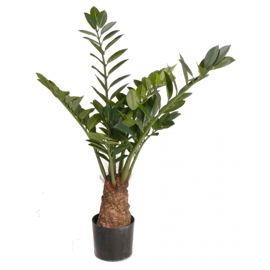 Grote zamioculcas kunstplant 100 cm