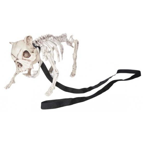 Halloween Honden skelet 42 x 20 x H19 cm