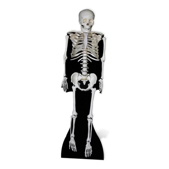 Halloween skelet versiering bord