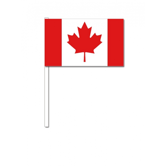 Handvlag Canada 12 x 24 cm