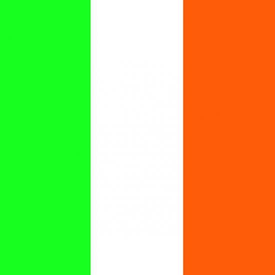 Ierse vlag servetjes 20 stuks