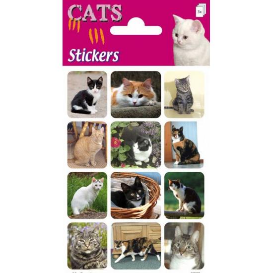 Katten stickers 3 velletjes