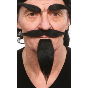 Kostuum set zwart snor, baard en wenkbrauwen
