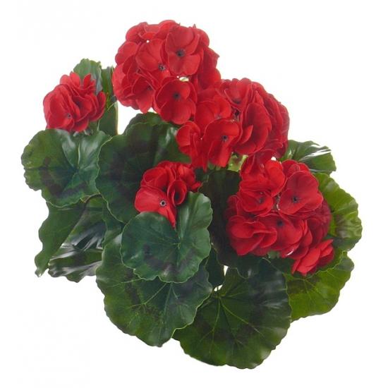 Kunst Franse Geranium rood 35 cm