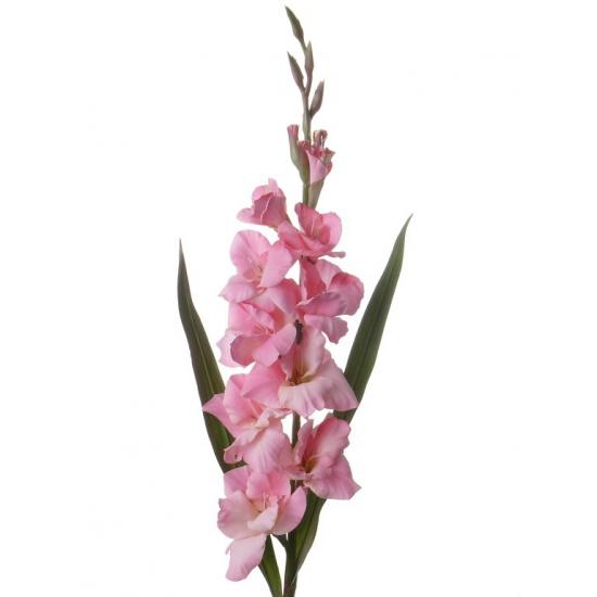 Kunstbloem roze gladiool
