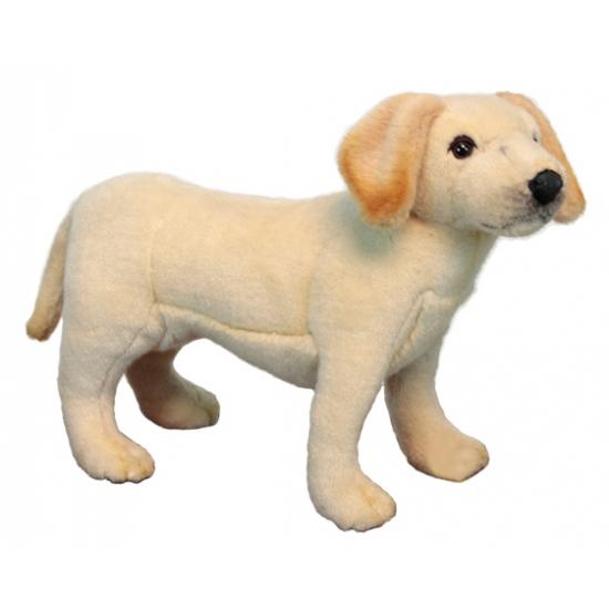 Labrador knuffeltje 35 cm