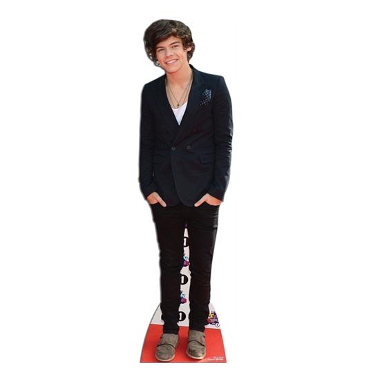 Life sized Harry Styles bord