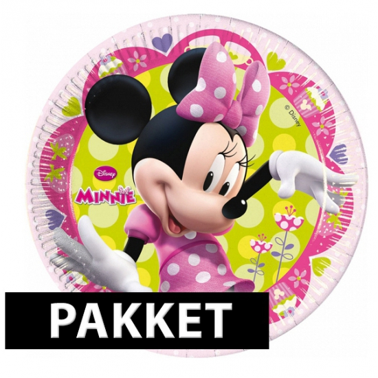 Minnie Mouse kinderfeest set