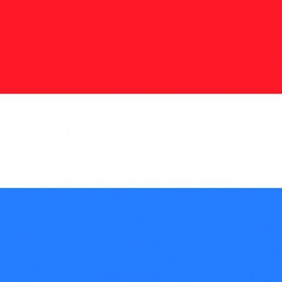 Nederlandse vlag servet 20 stuks