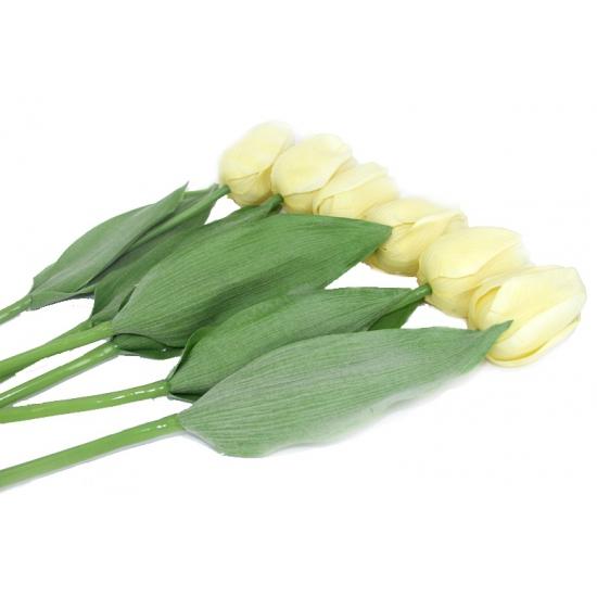 Nep tulpen set creme 6 stuks