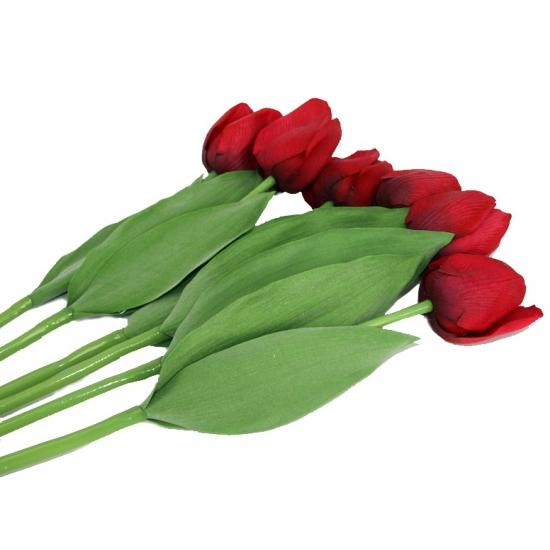 Nep tulpen set rood 6 stuks