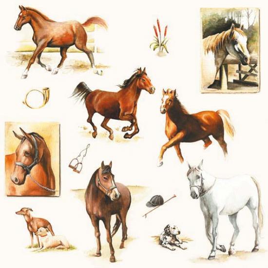 Paarden print servetten 20 stuks