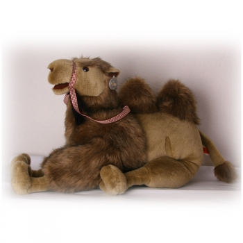 Pluche kamelen knuffels 60 cm
