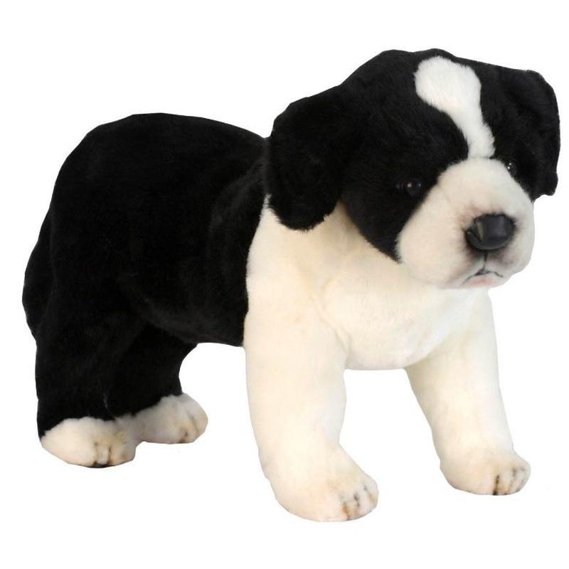 Realistische pluche Border Collie pup 39 cm