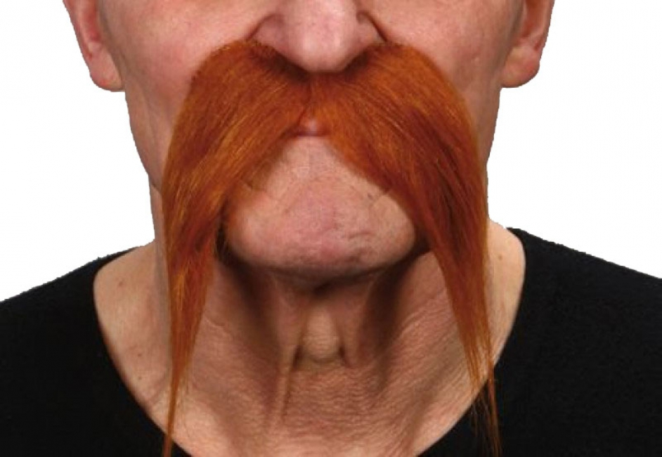 Rode snorren