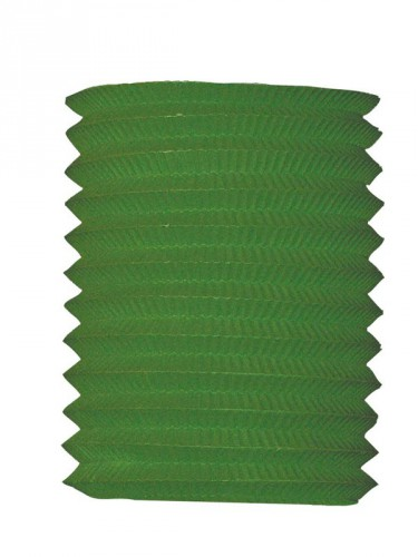 Treklampion groen 16 cm diameter