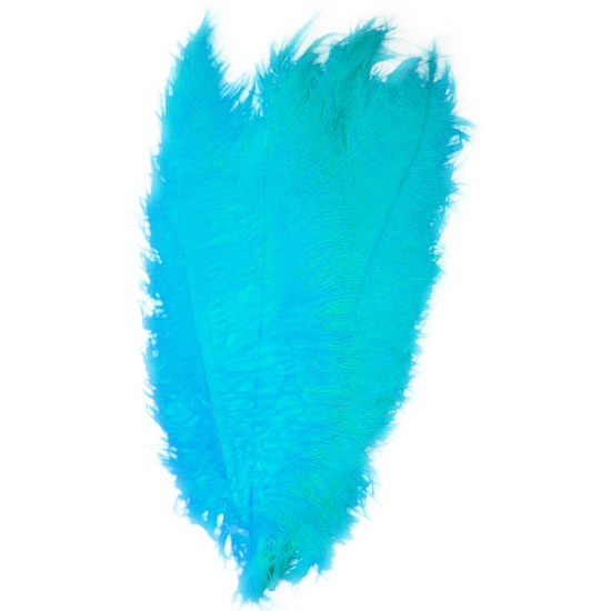 Turquoise spadonis sier veren