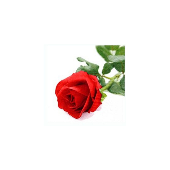Valentijnsdag servetten met roos