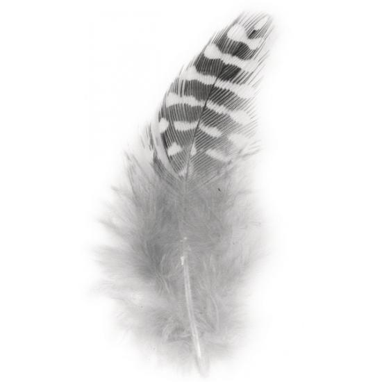 Veertjes in zwart en witte kleur