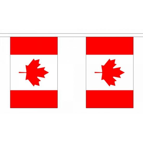 Vlaggenlijn canada 9 m