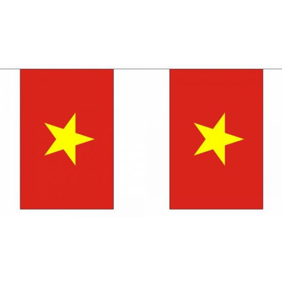 Vlaggenlijnen Vietnam 9 meter