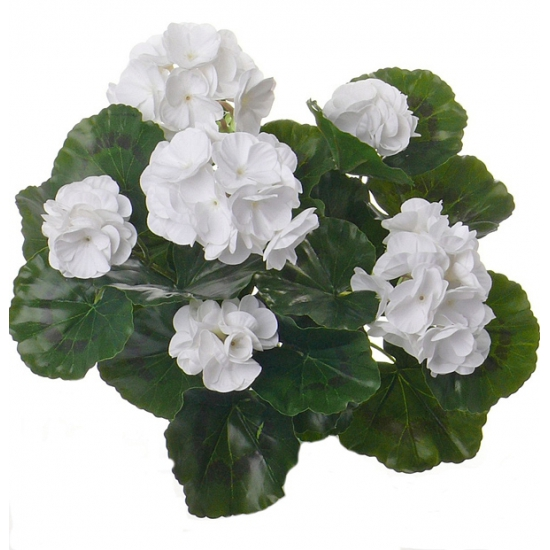 Witte Franse Geranium kunstbloem