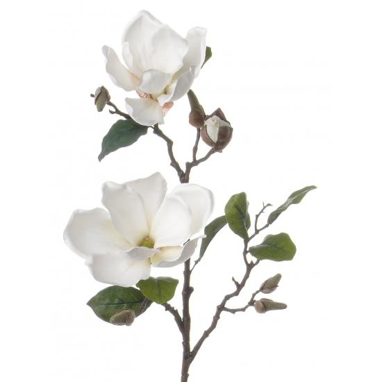 Witte Magnolia decoratie tak 72 cm