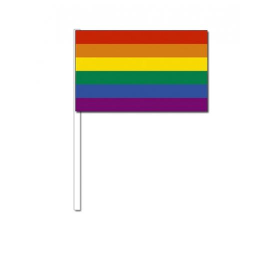 Zwaaivlaggetjes met regenboog 12 x 24 cm