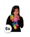 6 luxe gekleurde hawaii kransen