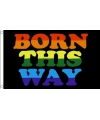 Born this way vlag 150 x 90 cm
