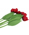 Bosje rode tulpen 48 cm