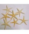 Decoratie zeester 10 cm