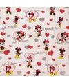 Disney inpakpapier minnie 200 x 70 cm