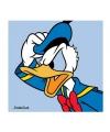 Donald duck poster van karton 40 x 40 cm