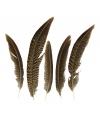 Goudfazant veren 13 cm 5 stuks