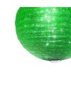 Groene lampion met glitters