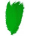 Groene spadonis sierveer 50 cm