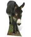 Groot decoratiebord ezel 122 cm
