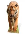 Groot decoratiebord tijger 130 cm
