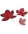 Herfst bladeren rood 3 stuks