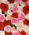 Inpakpapier bloemen print 15