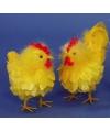 Kip en haan decoratie geel