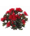 Kunst azaleaplant rood 20 cm