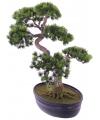 Kunst bonsai boom japans 40 cm